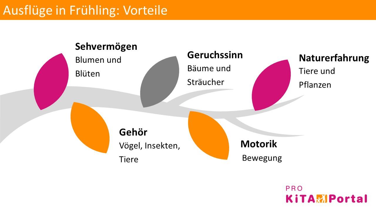 Ausflüge mit Kindern in Frühling, Vorteile von Ausflügen in Frühling, Ausflüge mit der Kita