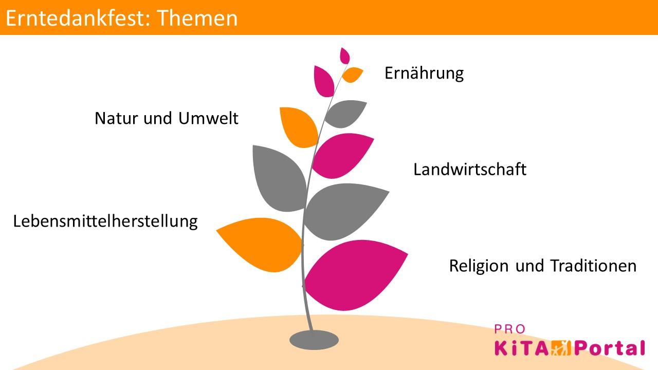 Themen für die Erntedankfeier in der Kita, Kindern Erntedank erklären