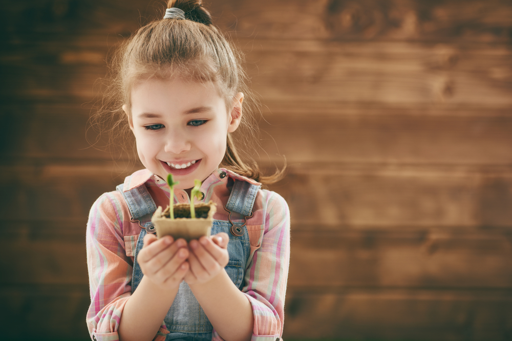 Baumsetzling als Geschenk in der Kita, Kind pflanzt einen Baum, Baum zum Abschiedsfest pflanzen