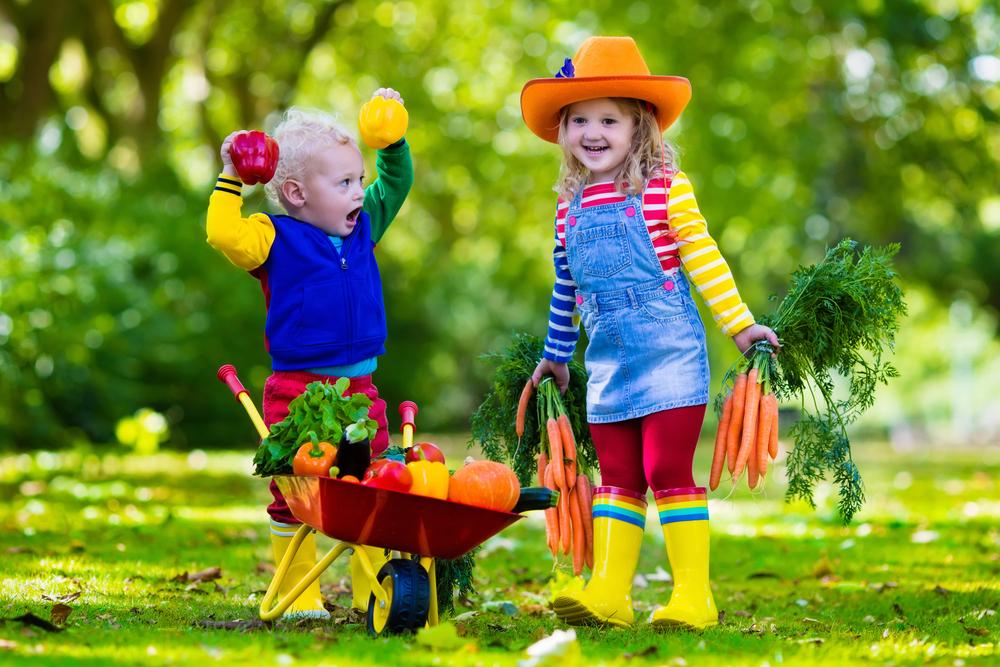 Erntedank in der Kita feiern, Kinder machen Gartenarbeit, Kinder spielen mit Gemüsen