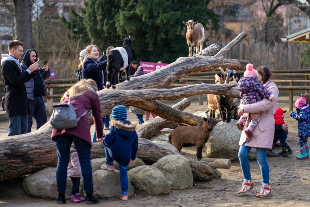 Jahreszeit Sommer im Zoo mit Kindern
