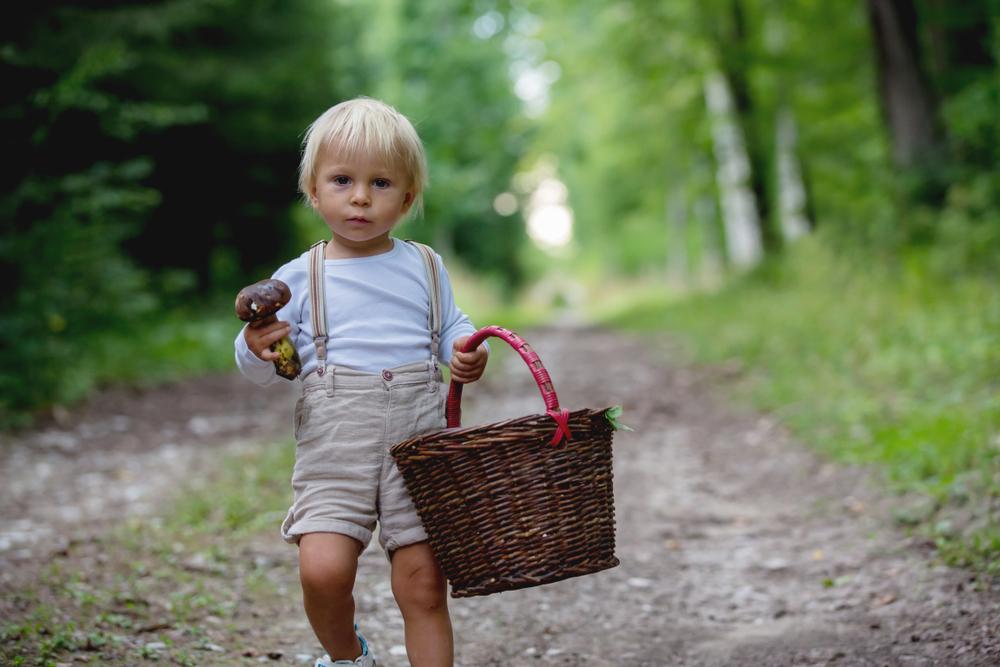 Kind im Wald, Ausflug in den Wald mit der Kita, Kinder und die Natur