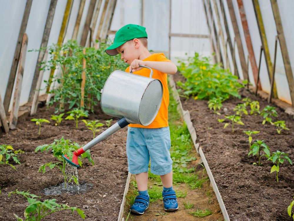 Kinder im Gemüsegarten, Umgang mit Natur durch Gartenarbeit beibringen