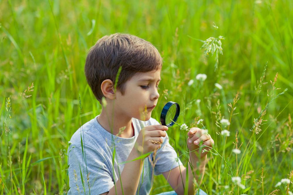 Lupen als Entdeckerwerkzeug für Kinder, Kinder entdecken die Welt mit einer Lupe,