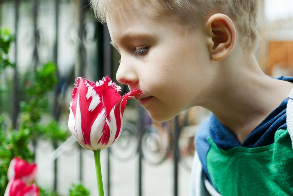 Sinne anregen bei Kindern, Sinnesorgane schärfen Kinder, Geruchssinn schärfen