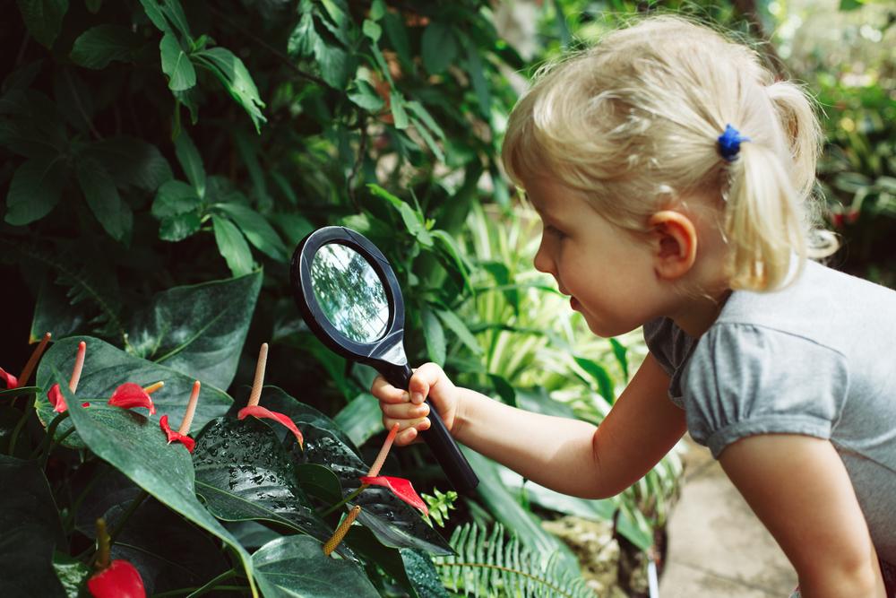 Ausflug in den botanischen Garten mit Kindern im Sommer