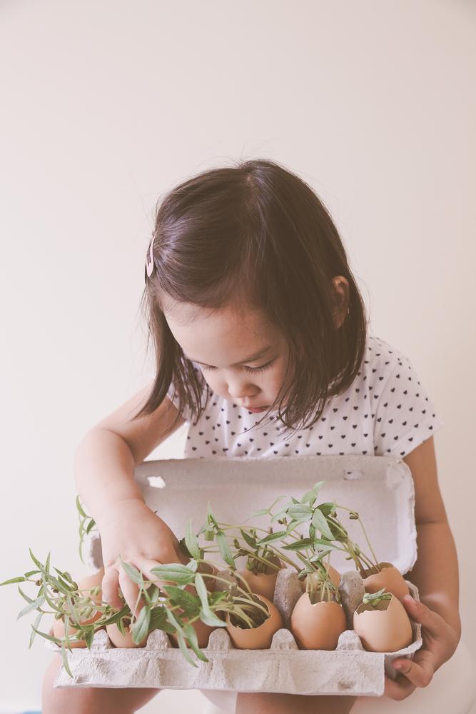 Basteln mit Eierkartons