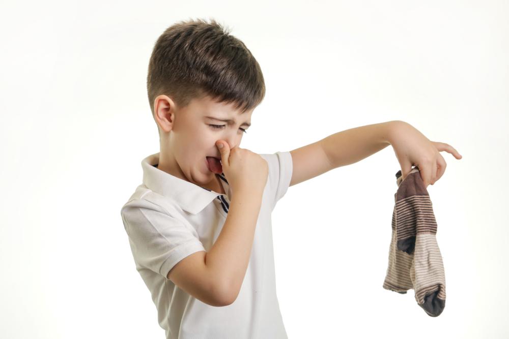 Geruchssinn aktivieren und fördern