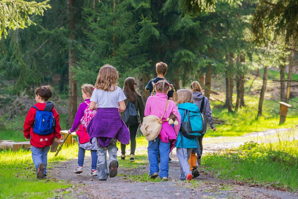 Waldspaziergang Kindergarten Wahrnehmungsspiele